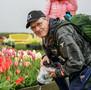 2021 Oregon's Wooden Shoe Tulip Fields: A Photographer's Guide