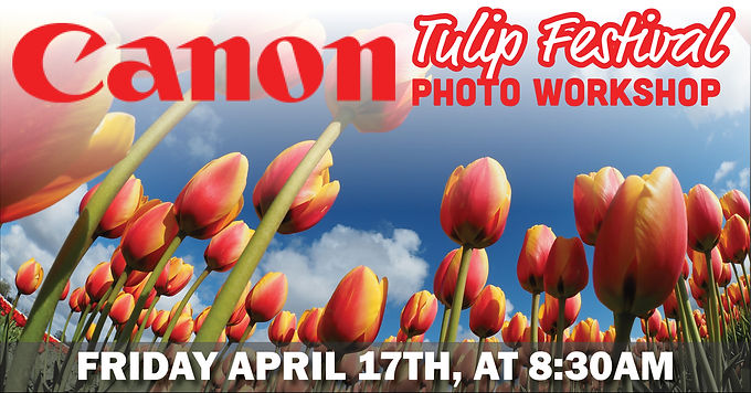 Canon Tulip Festival Photo Workshop | Friday, April 17th, at 8:30am