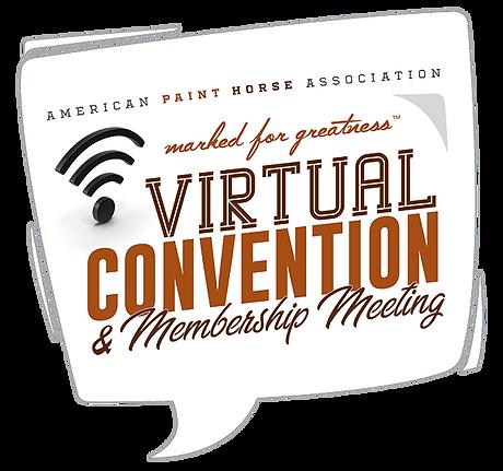 virtual-convention-logo-1.png