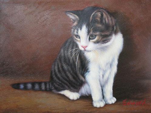 Pets Fashion Portrait Drawing/Painting Services