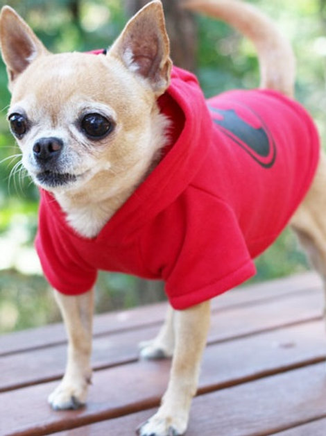 Pets Clothing - 116