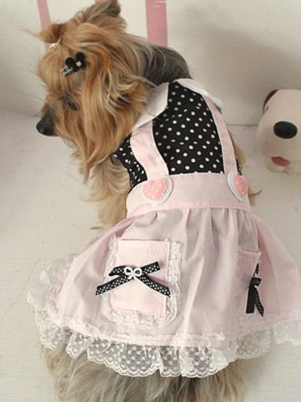 Pets Clothing - D-ribongirl
