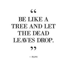 Be like a tree and let the dead leaves drop Rumi