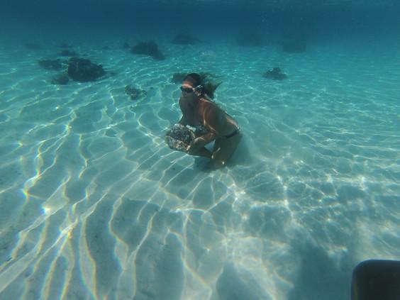 Underwater Training Tahiti