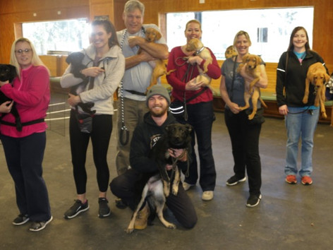 7 Newly Certified Dog Trainers