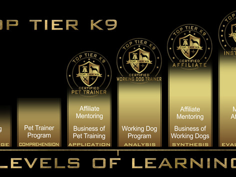 Tallahassee Fl January 15, 2015:  Top Tier K9 launches it's Dog Trainer Academy with a first of