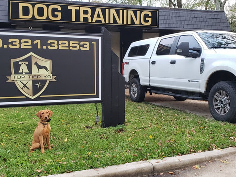 Top Tier K9 Expands to Tallahassee