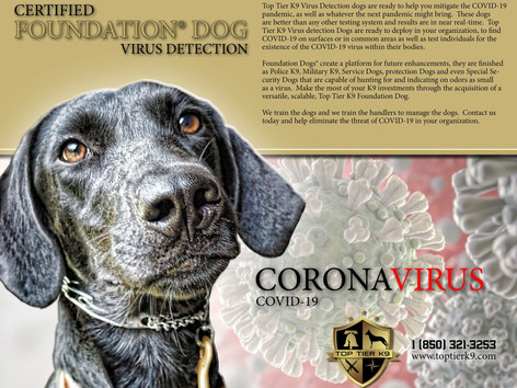 Virus Detection Dogs Available
