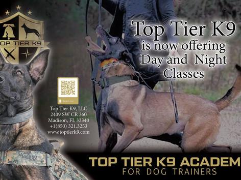 International Dog Trainer Certifications