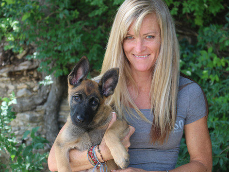 Tallahassee, FL, November 3, 2014: Top Tier K9 has added Kari Koch as its Director of Operations.