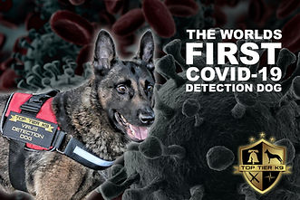 worlds First COVID-19 Detection Dog