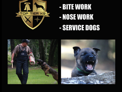 Top Tier K9 teams up with Bass Pro Shops of Tallahassee.