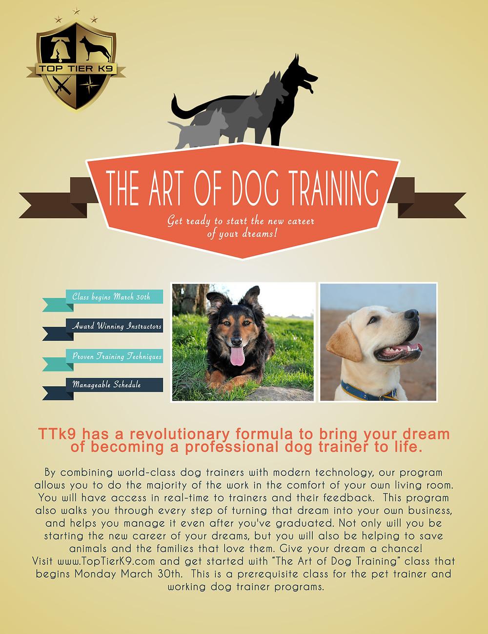 Art of Dog Training