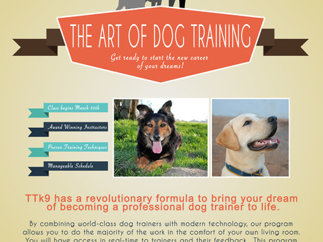 TTK9 has a revolutionary formula to bring your dream of becoming a professional dog trainer to life.