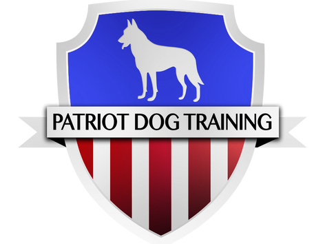 Patriot Dog Training Launches in Boerne Texas