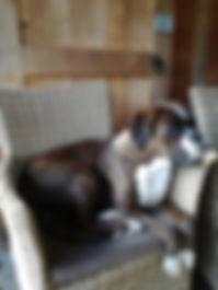 Qwin in stoel..jpg