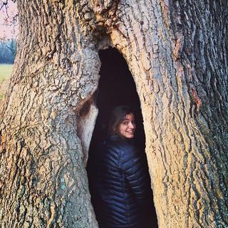 She inhabits a tree.jpg