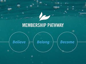 Belonging-Membership Pathway (800x600).p