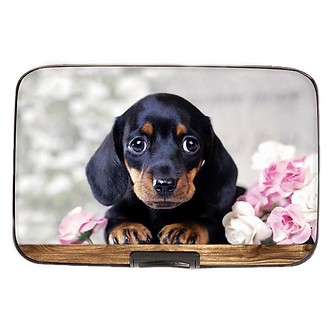 Black Dachshund Puppy Armored Wallet by Monarque