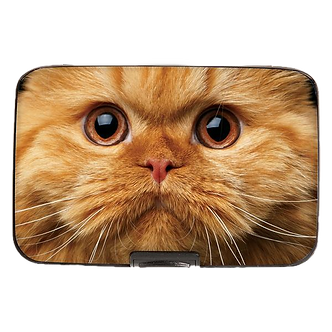 Orange Tabby Cat Armored Wallet by Monarque