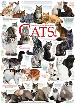 """1000 Piece Dog Jigsaw Puzzle by Cobble Hill """"Cat Quotes"""""""