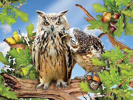 "500 Piece Owl Jigsaw Puzzle by SunsOut ""Owl Always Love You"""