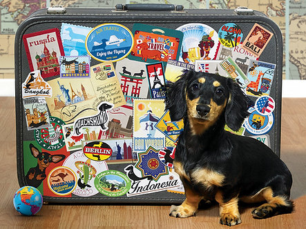 "500 Piece Dachshund Dog Jigsaw Puzzle by Cobble Hill ""Dachshund Round The World"""