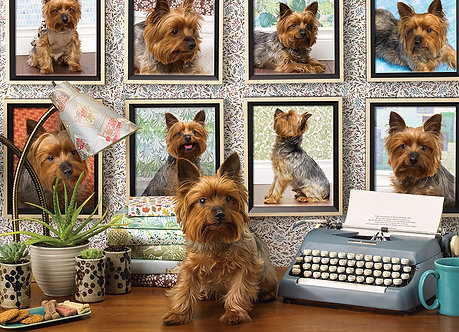 "1000 Piece Yorkie Dog Jigsaw Puzzle by Cobble Hill ""Yorkies Are My Type"""
