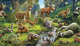 forest animals.png
