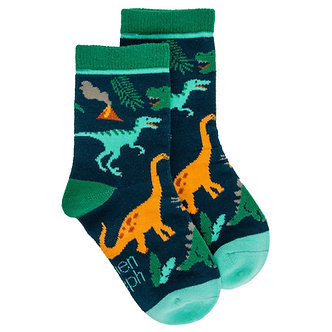 Prehistoric Dinosaur Toddler Socks by Stephen Joseph