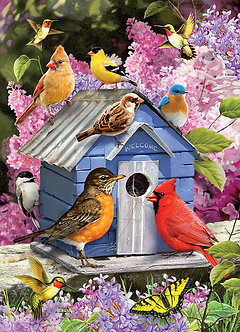 "1000 Piece Bird Jigsaw Puzzle by Cobble Hill ""Spring Birdhouse"""