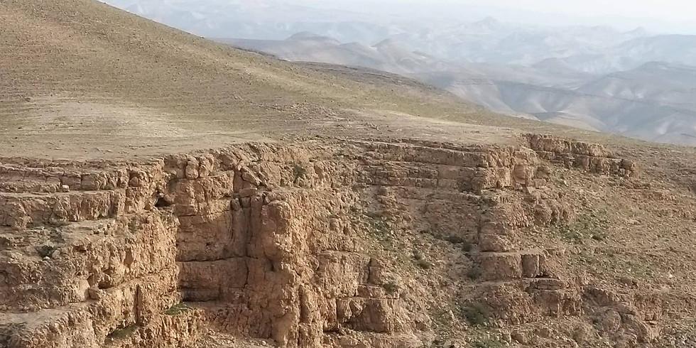 Desert Delight Tulynia Retreat
