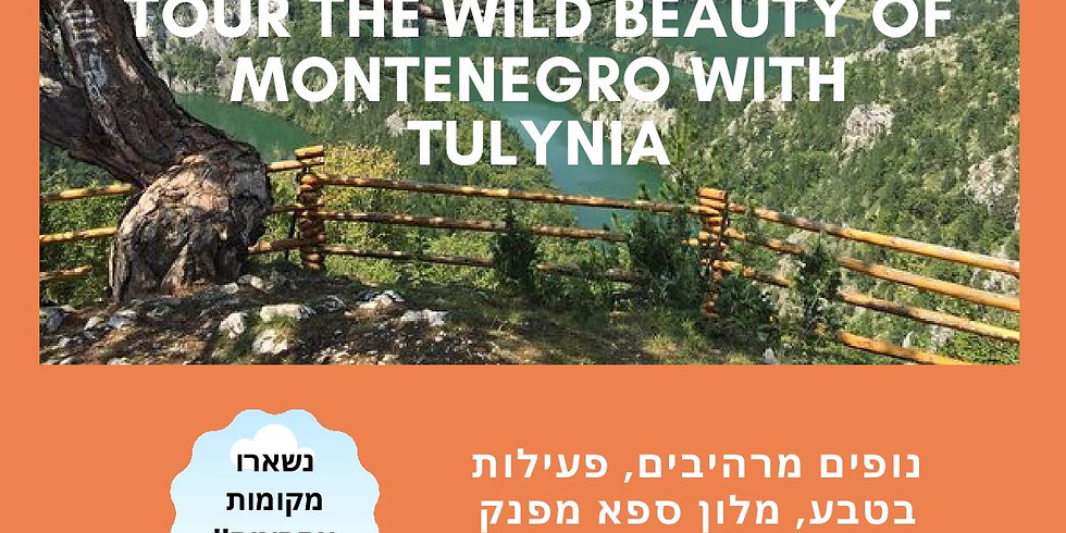 Tulynia Tours the Wild Beauty of Montenegro