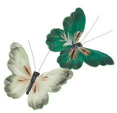 farfalle con clip.jpg