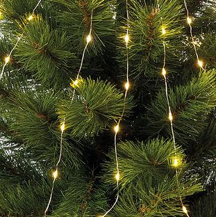 Microled per albero Natale 2020.jpg