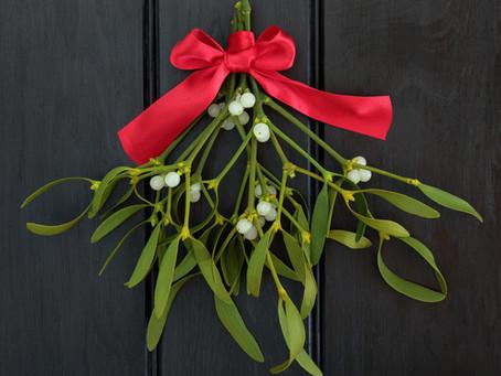 I colori delle feste: i fiori e le piante per augurare felicità e fortuna.