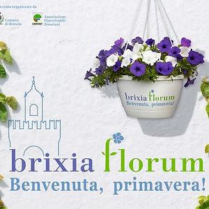 Brixia-Florum.jpg