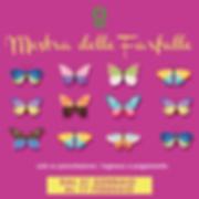 Lepidoptera locandine in_Tavola disegno
