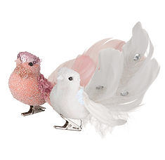 uccellini con piume.jpg