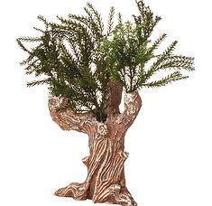 albero gesso .jpg