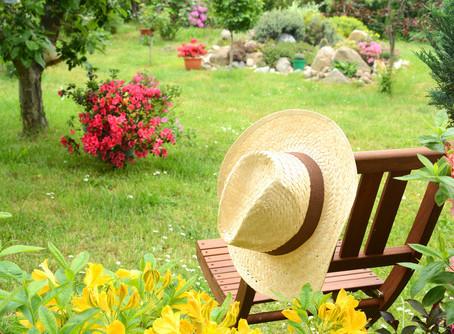 Chi si prende cura delle tue piante mentre sei in vacanza?