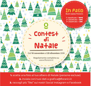 contest natale 2018-10.jpg