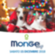 MONGE DAY NOV-07.jpg