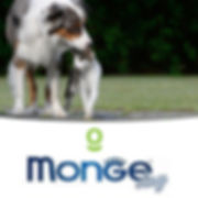 MONGE DAY NOV-05.jpg