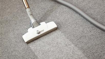 How To Eliminate & Prevent Carpet Mildew