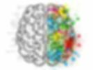brain-2062057_1280.webp