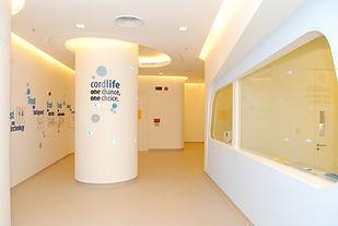 Taste_Cordlife Office (5).jpg