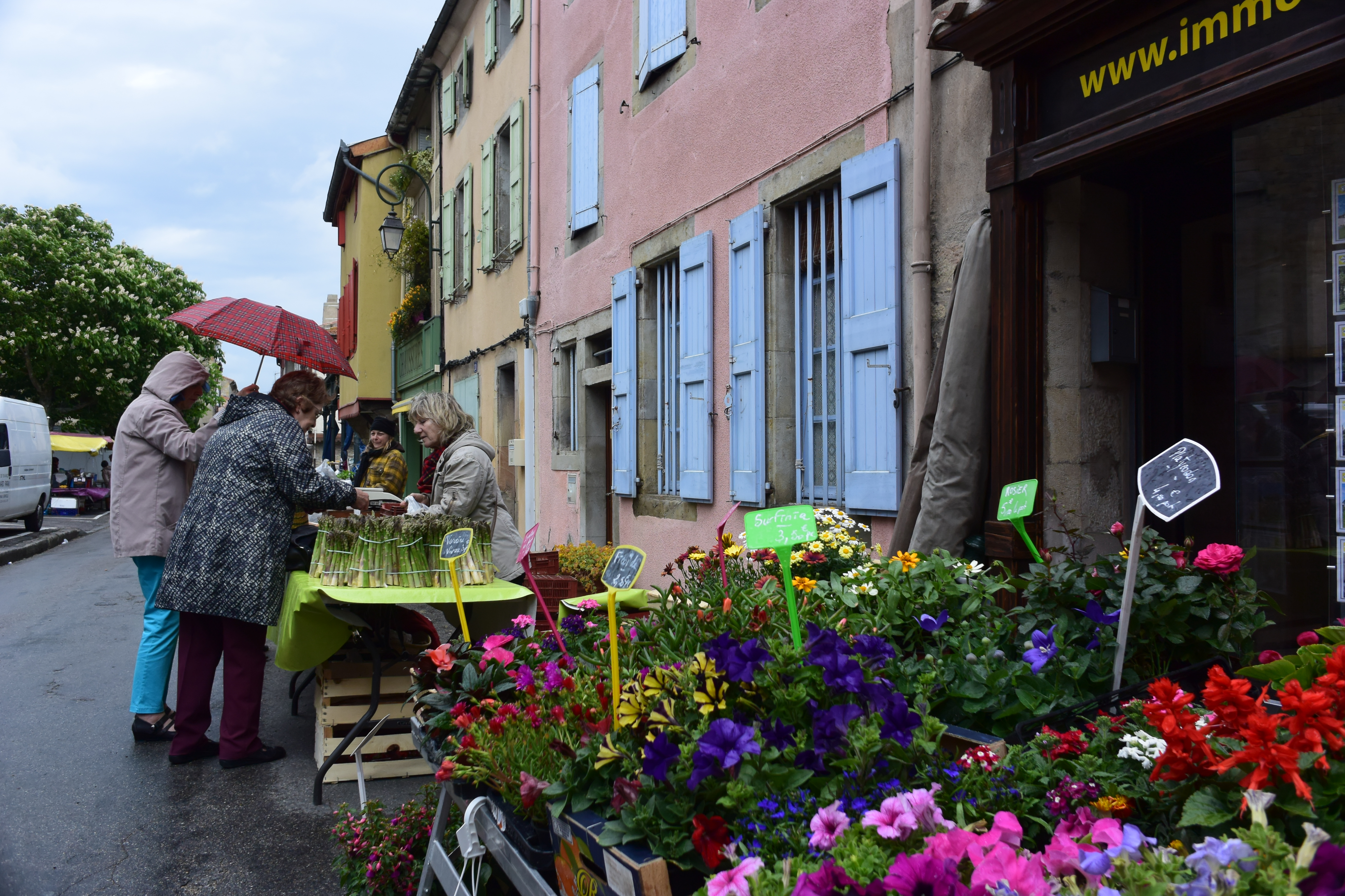 Market Day in Mirepoix, France