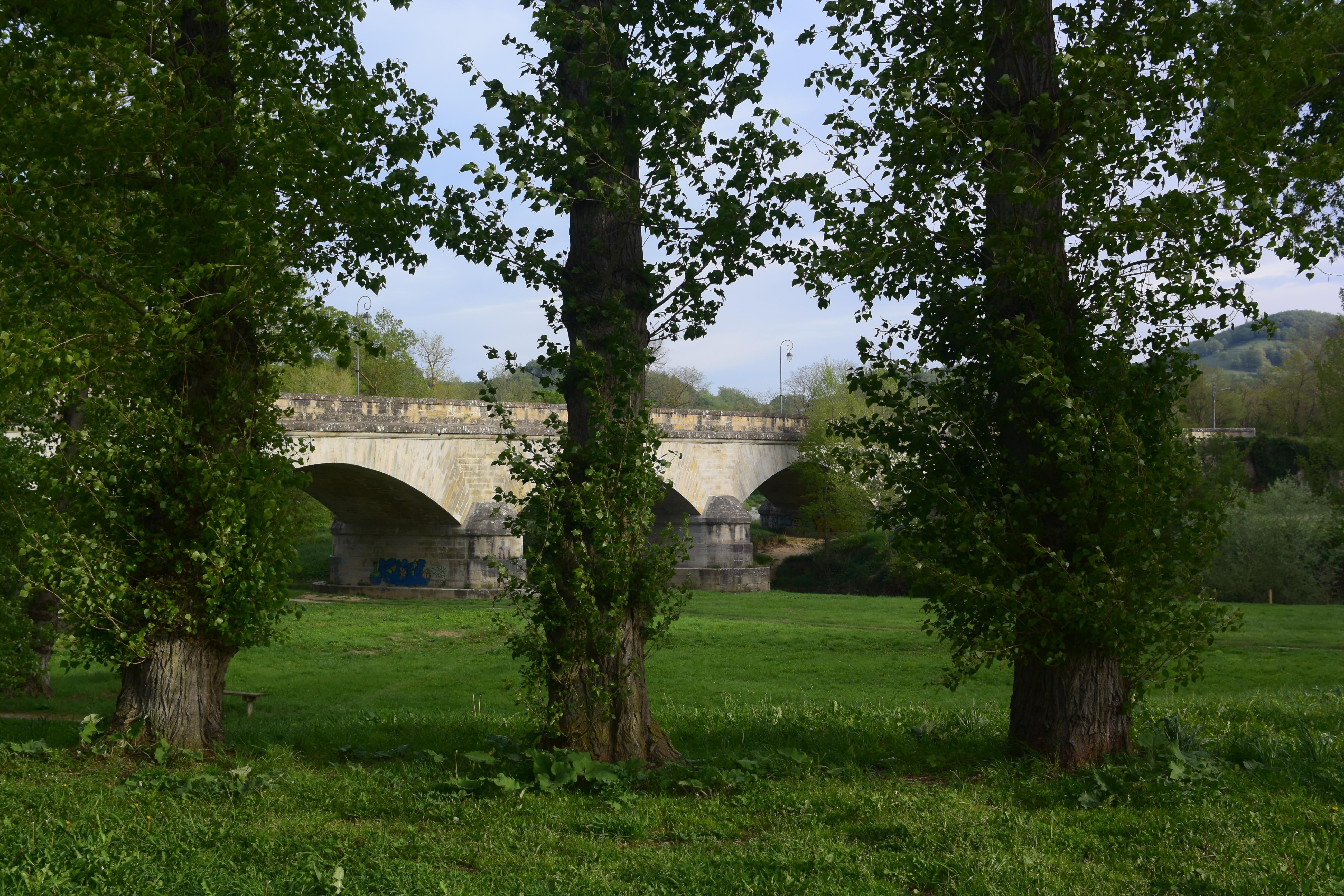 Bridge leading into Mirepoix
