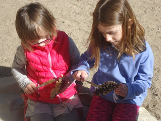 Taking Care of Our Earth: Celebrating Earth Day Montessori Style